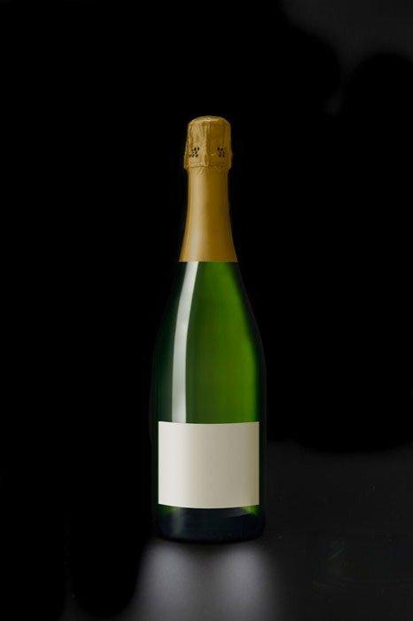 Premier Cru Blanc 100% Pinot Meunier